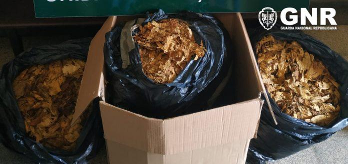 Apreensão de cerca de 34 quilos de folha de tabaco em Espinho