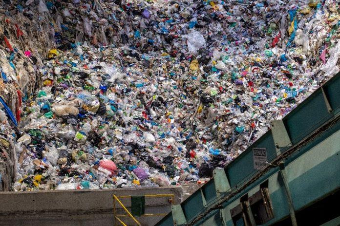 Cidadãos dos oito municípios da Lipor unidos na aposta pela Reciclagem